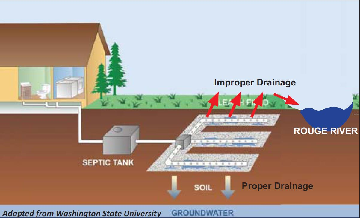 How Does A Septic Tank Work Plumbers Melbourne Fl 321